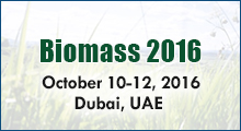 Biomass Conferences