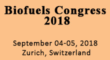 Biofuels and Bioenergy 2018