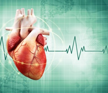 Congenital heart defects in Adults