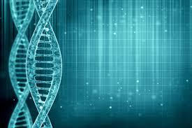 Heart diseases & Genetics