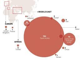 Middle East Respiratory Syndrome Coronavirus