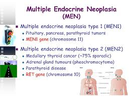 Multiple Endocrine Neoplasia(MEN-1)