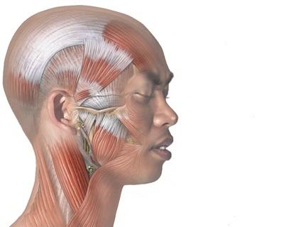 Rebound headaches