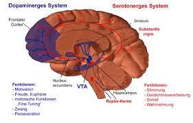 Serotonin Syndrome
