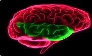 Temporal lobe seizure