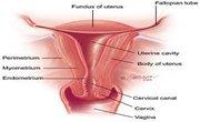 Vaginal Dryness