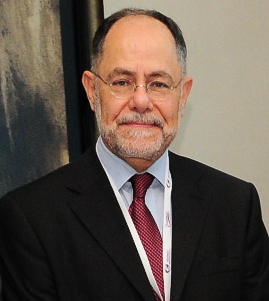 Hany Ibrahim Shafey