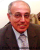 Muhammad Ahmed Gad
